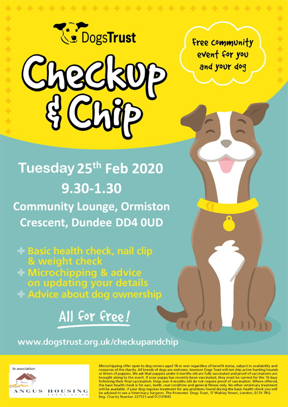 Checkup-&-Chip_A4_Collie_v1-Dundee